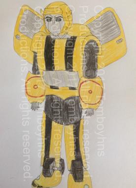 TFR Bumblebee design watermark